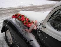 cvety_pod_snegom